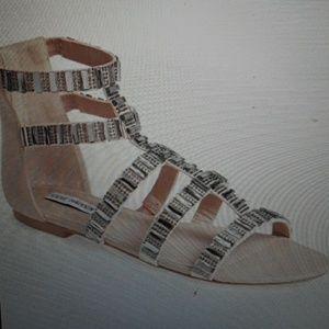 Steve Madden  'Cameoo ' Gladiator Sandal